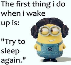 Pictures of Minions 080