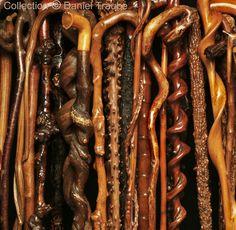 Fûts de cannes en bois naturel - http://danieltraube.skynetblogs.be/