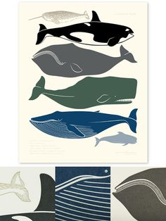 a cetacean study by enormous champion (i've wanted this forever)