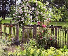 Den Gartenzaun bunt bepflanzen - [LIVING AT HOME]