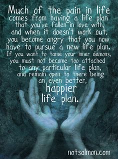 Much of the pain in life comes from having a life plan that you've fallen in love with and when it doesn't work out, you become angry that you now have to pursue a new life plan. - Karen Salmansohn