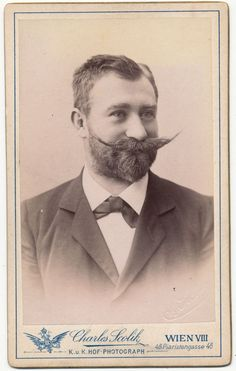 Antique Victorian CDV Photo, Handsome Man, Handlebar Moustache and Thick Beard, Vienna Austria... for sale by Anemone Antiques on Ruby Lane