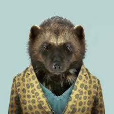 Afbeeldingsresultaat voor yago partal zoo portraits prints