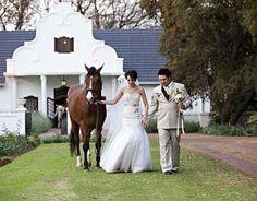Morgenzon bied 'n pasgemaakte venue vir jou spesiale dag! Dreaming Of You, Dream Wedding, Pretoria, Horses, The Originals, Animals, Weddings, Animales, Animaux