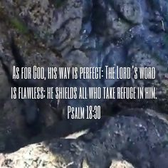 Psalms As for God, his way is perfect: The LORD's word is flawless; Scriptures For Anxiety, Prayer Scriptures, Bible Teachings, Faith Prayer, Bible Verses Quotes, Faith In God, Words Of Encouragement, Faith Quotes, Wisdom Quotes