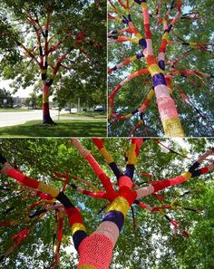 urban knitting #knitting - someday I'll knit tree cozies. Or maybe in the country? I'll knit porch post cozies!