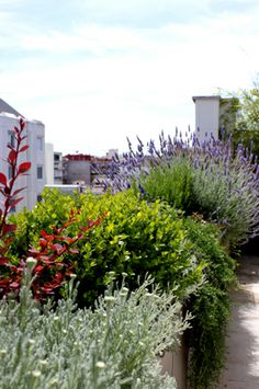 jardin decoracion terraza