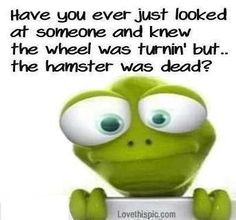 Have you ever funny quotes quote lol funny quote funny quotes humor. Just not thinking Lol, Haha Funny, Funny Stuff, Funny Shit, That's Hilarious, Funny Humor, Cute Quotes, Funny Quotes, Cartoon Quotes