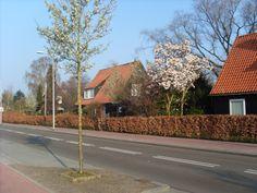 """""""Oostenrijkse Buurt""""in Hoogeveen"""