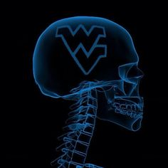 WV on my mind!this is soooo my husband! Wvu Sports, Football And Basketball, West Virginia University, Take Me Home, Clip Art, Hillbilly, Pittsburgh, Favorite Things, Pride