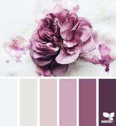 Design seeds color palettes posted daily for all who love color. Colour Pallette, Color Palate, Colour Schemes, Color Combos, Color Patterns, Purple Color Palettes, Design Seeds, Color Concept, Flora Design
