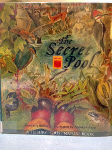 The Secret Pool, by Kimberly Ridley {from Tweets and Tree Frogs}
