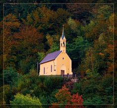 What a gorgeous church in the forest