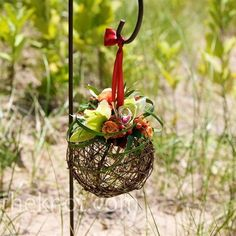 Grapevine pomander balls topped with orchids and berries hung from shepherd's hooks on the walkway leading down the beach.***R***