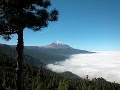 Tenerife - An amazing place with so many climates
