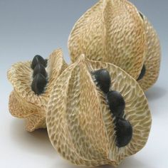 In this project, students will design and create a sculptural (non-functional) hollow form depicting an organic pod from an imaginary plant. Natural seed pods and found textural elements from. Ceramic Clay, Ceramic Pottery, Slab Pottery, Thrown Pottery, Ceramic Bowls, Organic Sculpture, Soft Sculpture, Garden Sculpture, Organic Ceramics