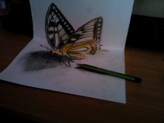 3D butterfly draw