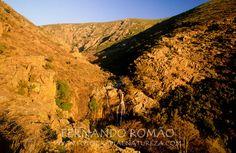 Situada no extremo ocidental da Cordilheira Central, a Serra da Lousã é uma pequena serrania da zona Centro, formada maioritariamente por xistos. Culminando pouco acima dos 1200m, a escassos 2 a 3k...