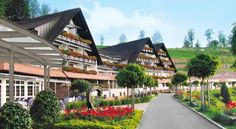 Relais & Châteaux Hotel Dollenberg - Leave the stress of daily life behind. Turn your back on the foggy clouds and noise of the deep valley. Get to the top and join us in the Black Forest, where the air is clean and the sun puts a smile on your face.