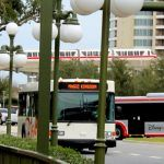 Magic Kingdom Bus and Monorail Transportation Walt Disney World