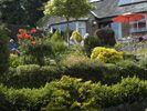 - Wirksworth Open Gardens 2013 Wonderful Places, Gardens, Outdoor Gardens, Garden Types, Garden, Yards, Formal Gardens