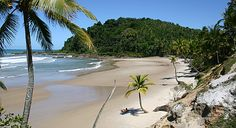 Engenhoca, Itacaré - BAHIA -  Viaje na Viagem Romantic Places, Beautiful Places, Brazil Beaches, Places Worth Visiting, Beach Day, Travel Inspiration, Travel Destinations, Around The Worlds, Landscape