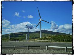 Wind turbines in Manawatu...NZ