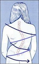 Muscle Tension And Scoliosis http://scoliosistreatmentalternatives.com/scoliosistreatments/active-release-scoliosis/
