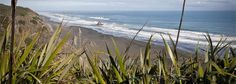 Waitakere Ranges regional park-Auckland, New Zealand