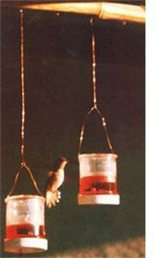 Easy DIY Hummingbird Feeder Ideas to Apply in Your Garden https://decomg.com/easy-diy-hummingbird-feeder-ideas-to-apply-in-your-garden/