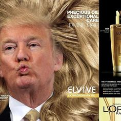 Pinned onto Funny Memes Board in Humor Category Donald Trump Hair, Donald Trump Funny, Funny Duck, Funny Jokes, Political Memes, I Love To Laugh, In This World, Funny Pictures, Photoshop