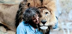 Lions, tigers and Tippi Hedren, oh my! Some of you may have heard of this film, but many others probably not. Roar is a one-of-a-kind film made by producer
