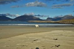 Luskentyre beach © Copyright Virtual Hebrides