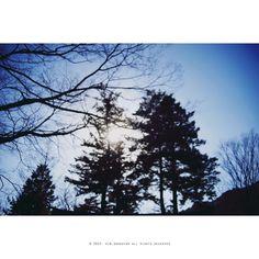 꼭 그런날 있잔아..   멍하니 푸른 하늘을 보고 싶은 날....   #SonyA7 #snap #35mm #Digital #이종교배 #NikonLens #mf #Nikkor35~70F3.3~4.5 #일상 #daily #photo #사진 #감성사진 #Pixelmator #photoholic #김군_Photography