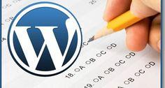 Create Categories In WordPress