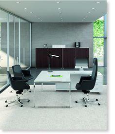Descubre nuestras líneas de productos de sillas, sillones, escritorios y mesas. Nuestras marcas Areline, Visso y Quadrifoglio.