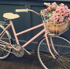 Pink ☓☓