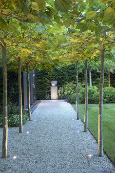 Modern Landscaping, Backyard Landscaping, Back Gardens, Outdoor Gardens, Patio Plans, Water Lighting, Outdoor Rooms, Garden Paths, Garden Inspiration