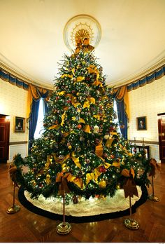 The White House Blue Room 2009 with the official and largest WH tree. http://www.thefrenchtangerine.com/2013/12/christmas-trees.html . http://photos.hgtv.com/photo/blue-room-christmas-2013