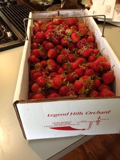 Fresh strawberries :) 25 lbs of strawberries from Legend Hills Orchard, Utica Ohio