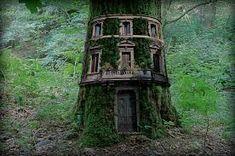 Je ziet het wel eens meer bij milieuactivisten bij het slopen van een bos. Ze gaan even in de bomen wonen in de hoop het bos alsnog te redden. Meestal zonder resultaat. Maar heb je er al eens aan gedacht om permanent in een boom te gaan wonen? Deze mensen in ieder geval wel. The sky is the limit… m