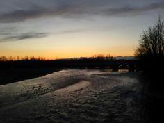 Bacino idrico tra Dora e Canal Farini. Saluggia, Piemonte, Italia
