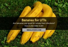 Are bananas good for urinary tract infections? Does it make sense to eat in the treatment and prevention of UTIs? A critical evidence-based look! Remedies For Kidney Infection, Home Remedies For Uti, Uti Remedies, Urinary Tract Infection, Nutrition Articles, Health And Nutrition, Essential Oils For Uti, Uti Relief
