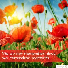 We do not remember days... www.lifecoachingcourses.ie #life #moments #memories