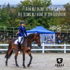 Horses, Girls, Quotes, Animals, Instagram, Toddler Girls, Quotations, Animales, Daughters