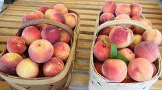 Autumn Prince Peach