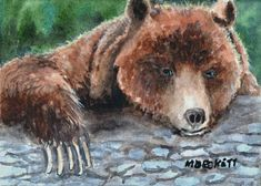 ACEO Original Painting Bear Claws wildlife animals grizzly brown log forest #Impressionism