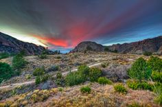 Big Bend National Park, Texas.