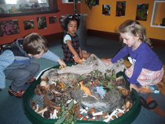 "Including natural materials in small world play at New Horizons Preschool Learning Centre ("",)"