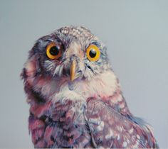 John #Pusateri drawings this beautifully colored #owls using pencils and charcoal.